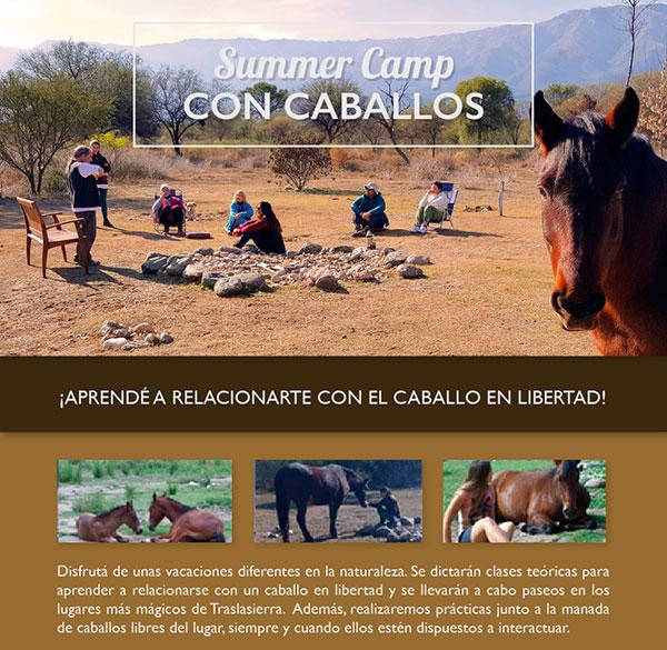 Summer Camp con Caballos